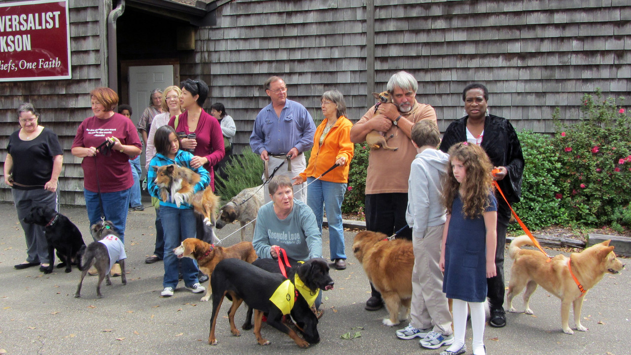 Blessing of the Pets by Natalie Maynor