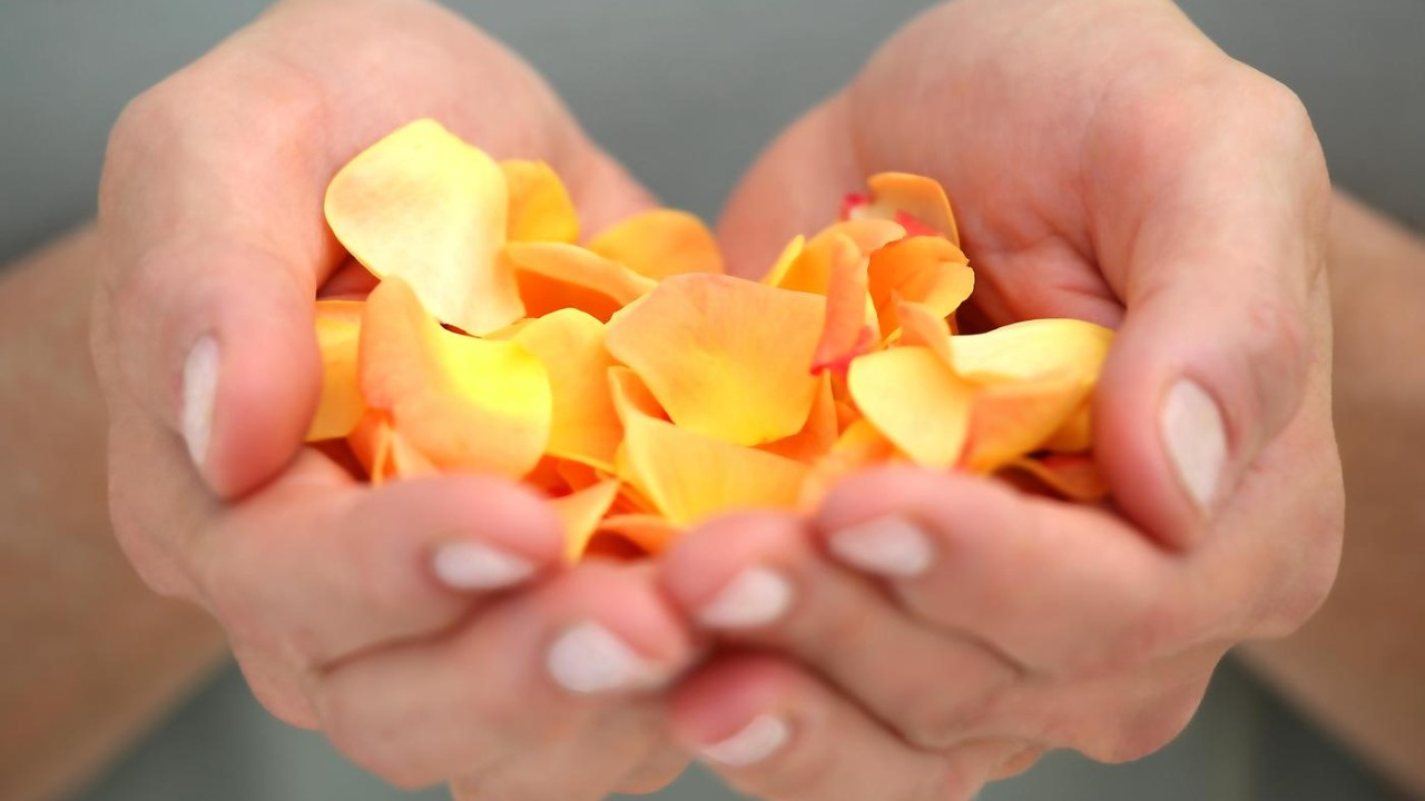 spa_hand_flowers03